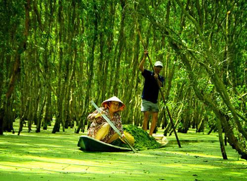 Vietnam Luxury